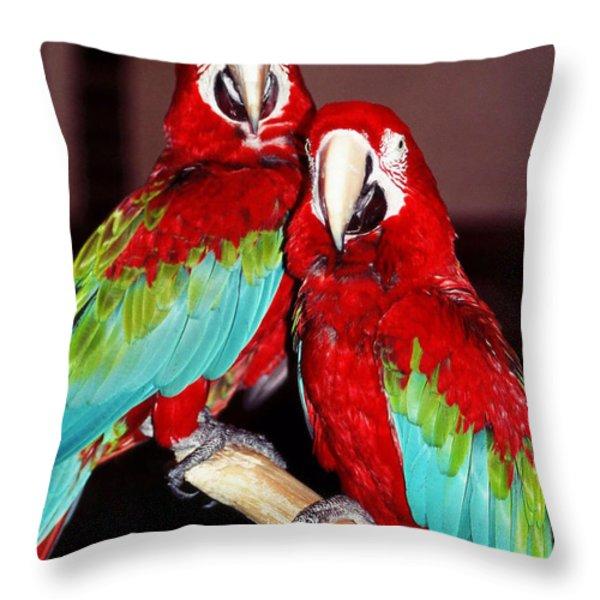 Two Friends ... Throw Pillow by Juergen Weiss