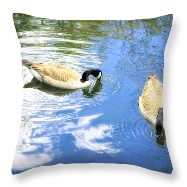 Two Geese Throw Pillow by Scott Norris