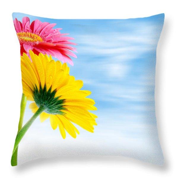 Two Gerberas Throw Pillow by Carlos Caetano