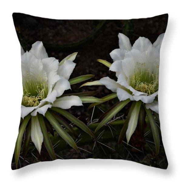Two Of A Kind  Throw Pillow by Saija  Lehtonen