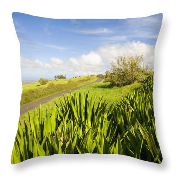 Ulupalakua Country Road Throw Pillow by Ron Dahlquist - Printscapes