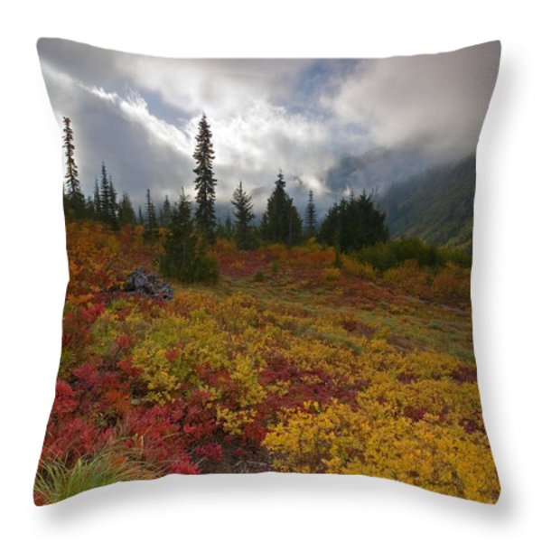Unicorn Peak Throw Pillow by Mike  Dawson
