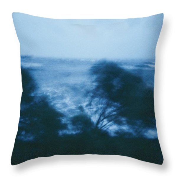 Untitled Throw Pillow by Robert Madden