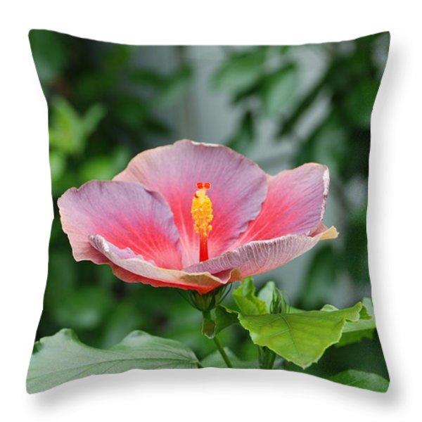Unusual Flower Throw Pillow by Jennifer Lyon