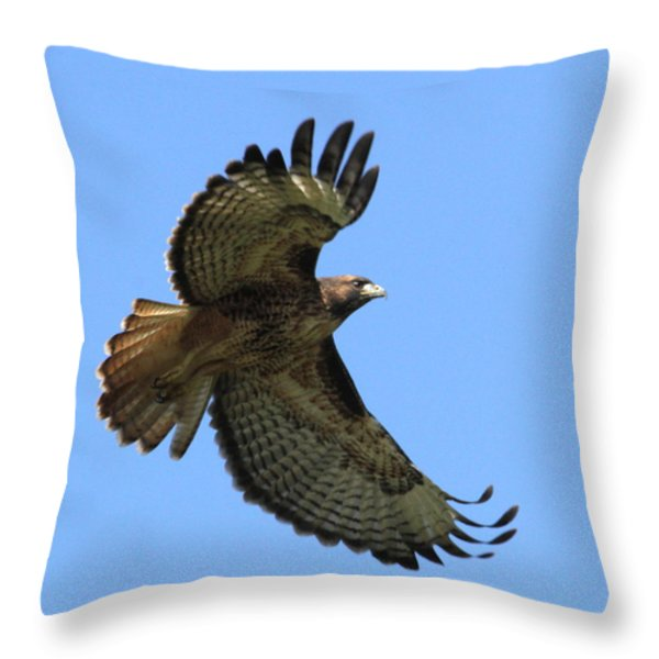 Up Up And Away Throw Pillow by Angie Vogel
