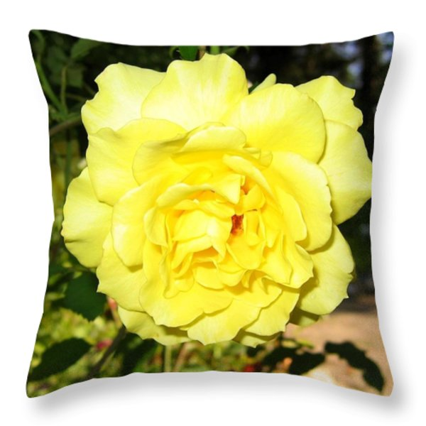 Upbeat Yellow Rose Throw Pillow by Will Borden