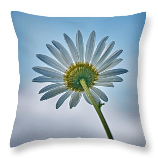 Upward Throw Pillow by Nathan Larson