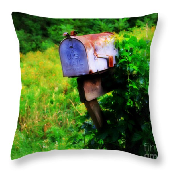 U.S. Mail 2 Throw Pillow by Perry Webster