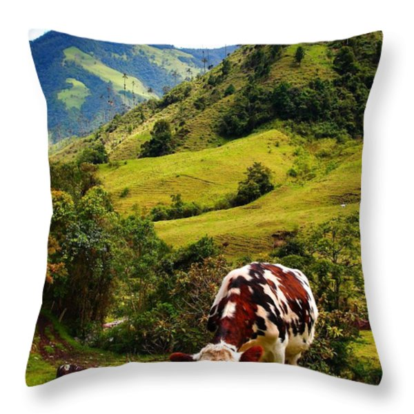 Vaca Throw Pillow by Skip Hunt