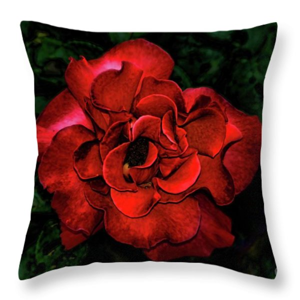 Valentine Rose Throw Pillow by Mariola Bitner