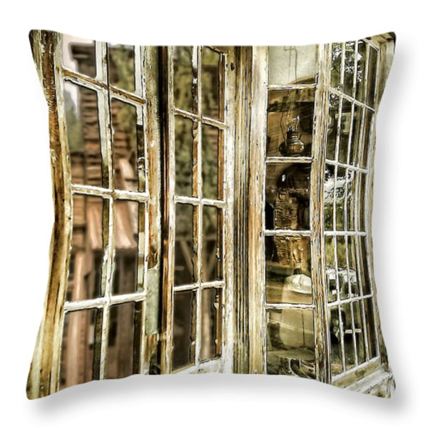 Vc Window Reflection Throw Pillow by Susan Kinney