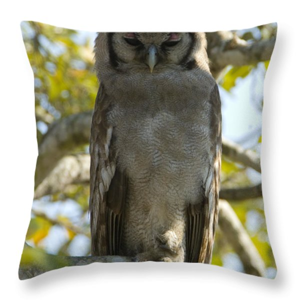 Verreauxs Eagle Owl, Bubo Lacteus, Or Throw Pillow by Paul Sutherland