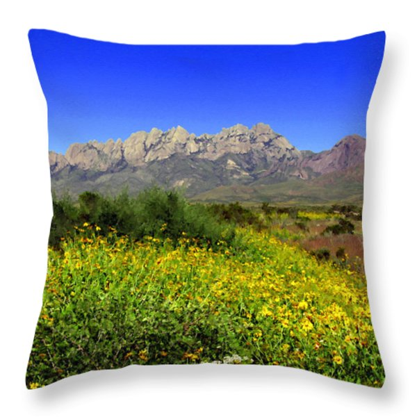 View from Dripping Springs Rd Throw Pillow by Kurt Van Wagner