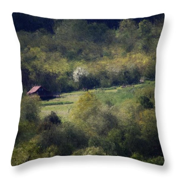 View From The Pond At The Hacienda Throw Pillow by David Lane