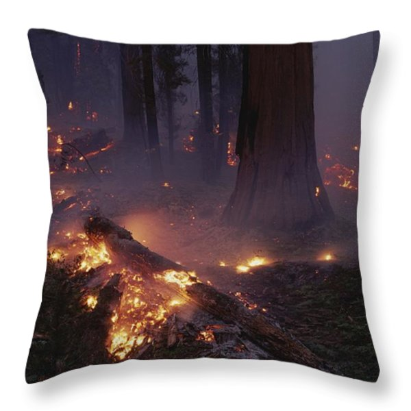 View Of A Controlled Fire In A Stand Throw Pillow by Raymond Gehman