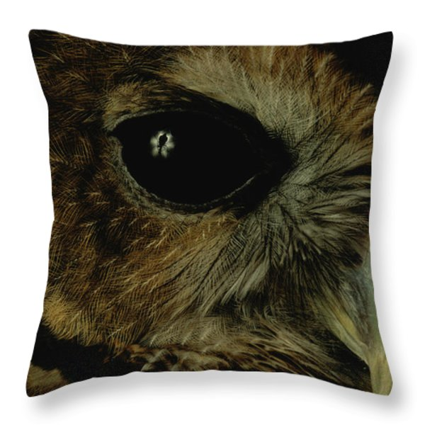 View Of A Northern Spotted Owl Strix Throw Pillow by Joel Sartore