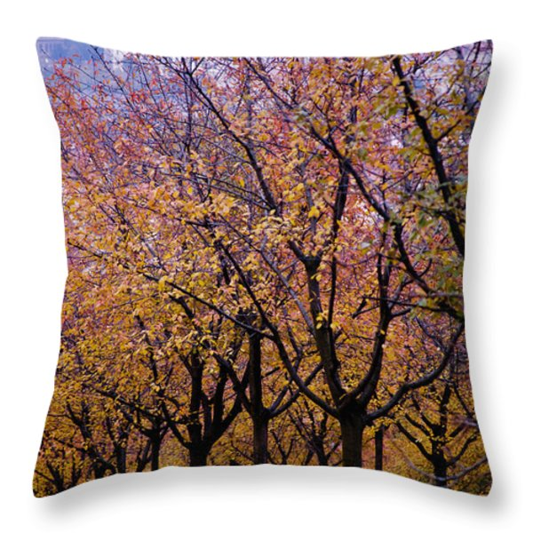 View Of Prague From Mala Strana Park Throw Pillow by Axiom Photographic