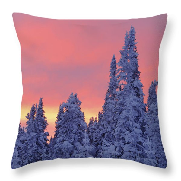 View Of Snow-covered Trees And Sky Throw Pillow by Yves Marcoux