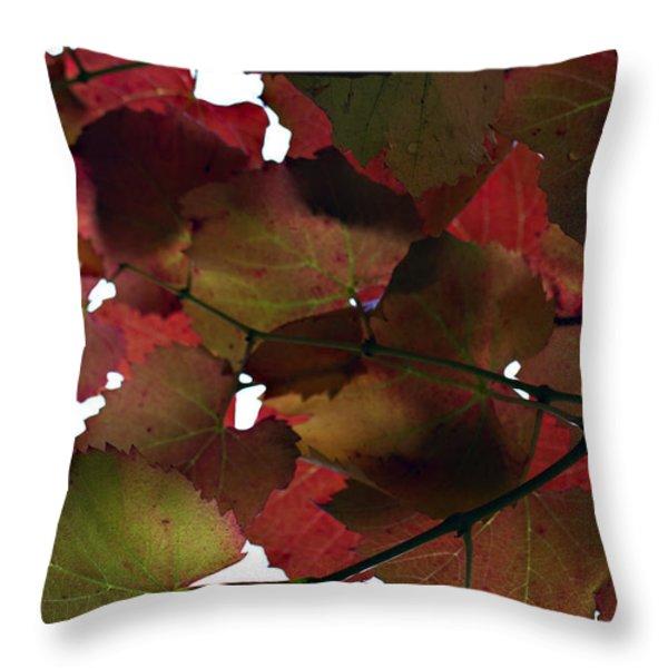 Vine Leaves Throw Pillow by Douglas Barnard