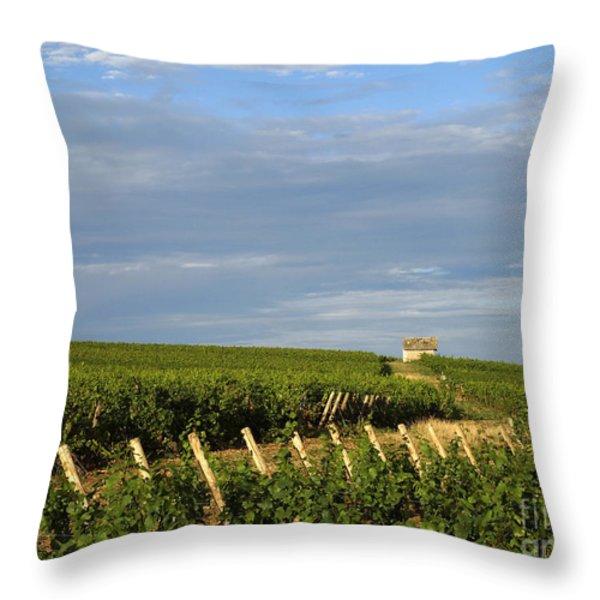 Vines In Burgundy. France Throw Pillow by Bernard Jaubert