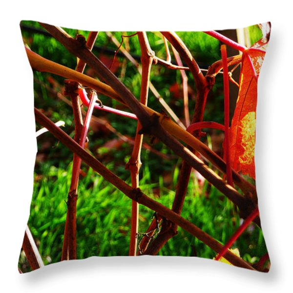 Vineyard 15 Throw Pillow by Xueling Zou