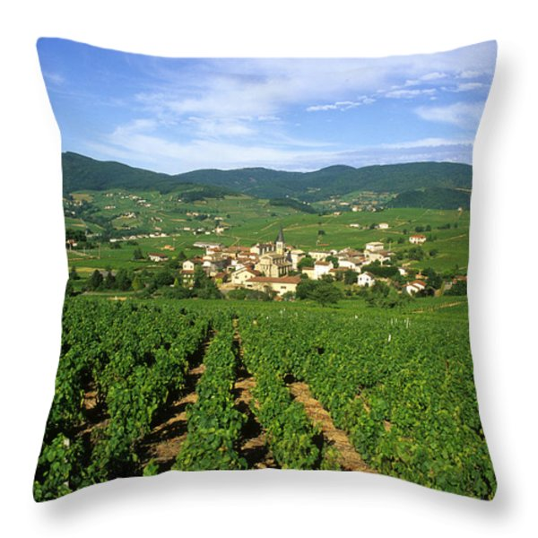 Vineyard Of Beaujolais In France Throw Pillow by Bernard Jaubert