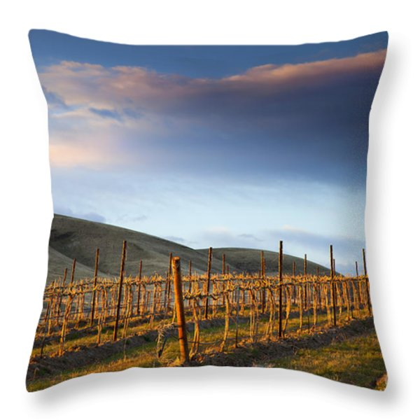 Vineyard Storm Throw Pillow by Mike  Dawson