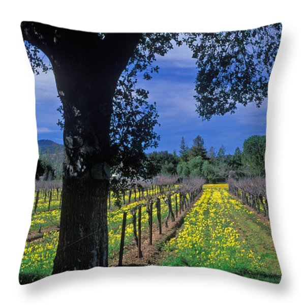 Vineyard View Throw Pillow by Kathy Yates