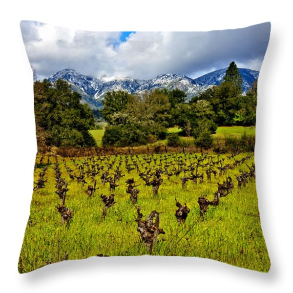 Vineyards and Mt St. Helena Throw Pillow by Garry Gay