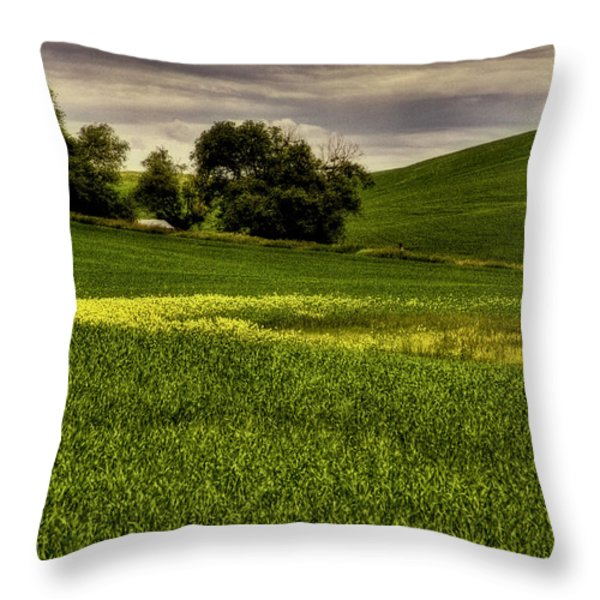 Vintage Palouse Country Throw Pillow by David Patterson