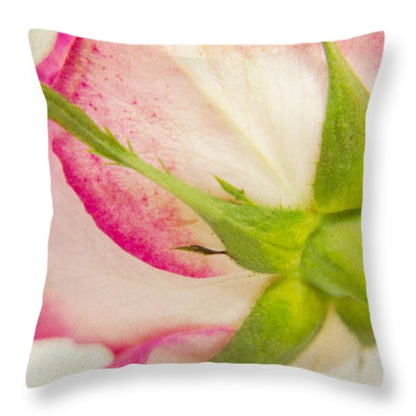 Vintage Rose Throw Pillow by Angela Doelling AD DESIGN Photo and PhotoArt