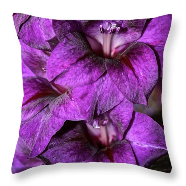 Violet Glads Throw Pillow by Susan Herber