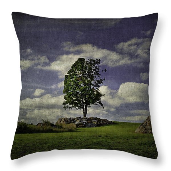Wake Me Up When September Ends Throw Pillow by Evelina Kremsdorf