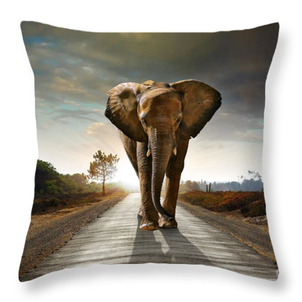 Walking Elephant Throw Pillow by Carlos Caetano