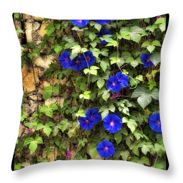 Wall Beauty 2 Throw Pillow by Mauro Celotti