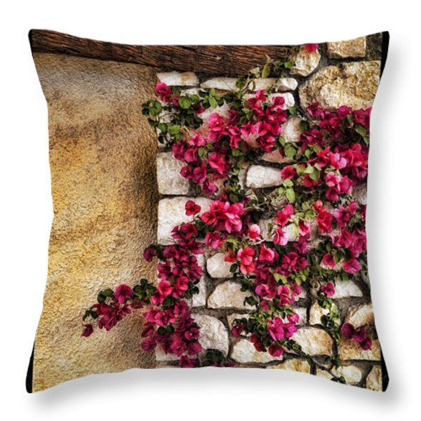 Wall Beauty Throw Pillow by Mauro Celotti
