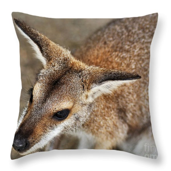 Wallaby Portrait Throw Pillow by Kaye Menner