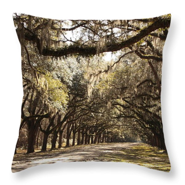 Warm Southern Hospitality Throw Pillow by Carol Groenen
