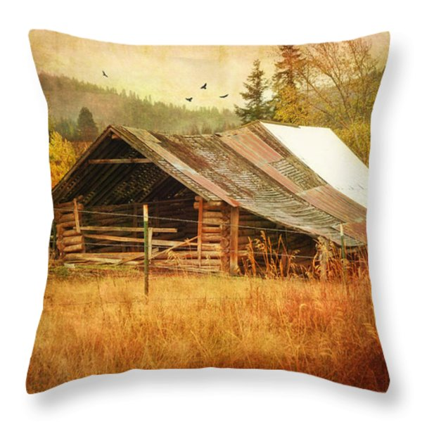 Was Once A Dream Throw Pillow by Mary Timman