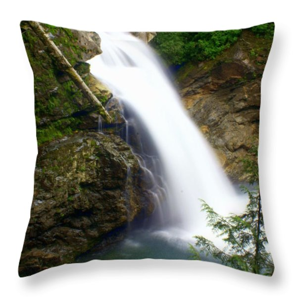 Washington Falls 2 Throw Pillow by Marty Koch