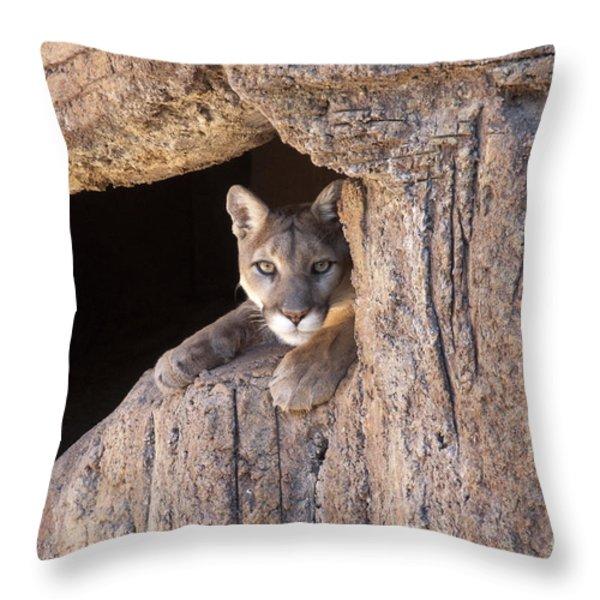 Watchful Eyes Throw Pillow by Sandra Bronstein