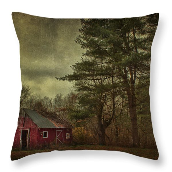 Watching Over me Throw Pillow by Evelina Kremsdorf