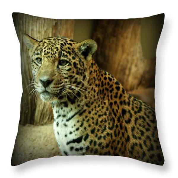 Watching Throw Pillow by Sandy Keeton
