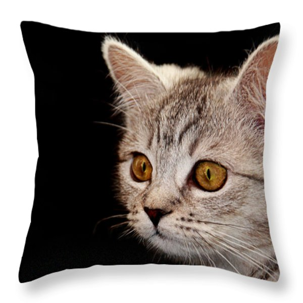 Watching You Throw Pillow by Claudia Moeckel