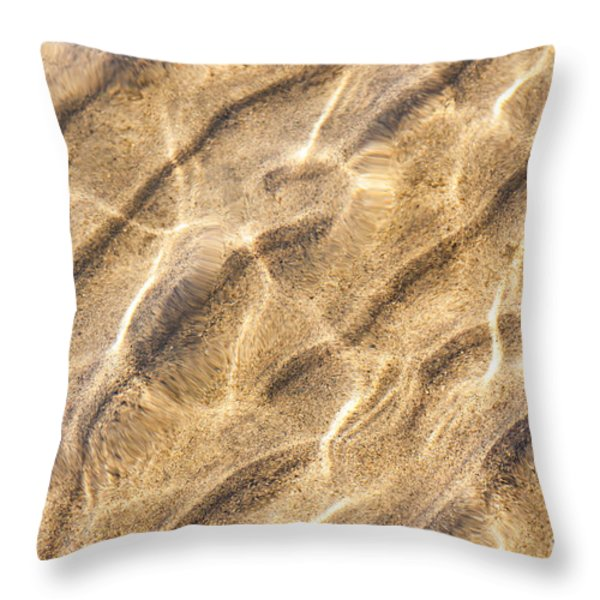 Water And Sand Ripples Throw Pillow by Elena Elisseeva