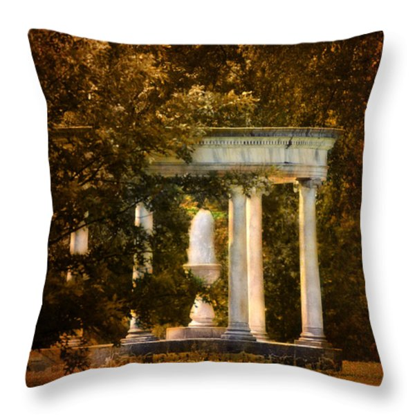 Water Fountain Throw Pillow by Jai Johnson