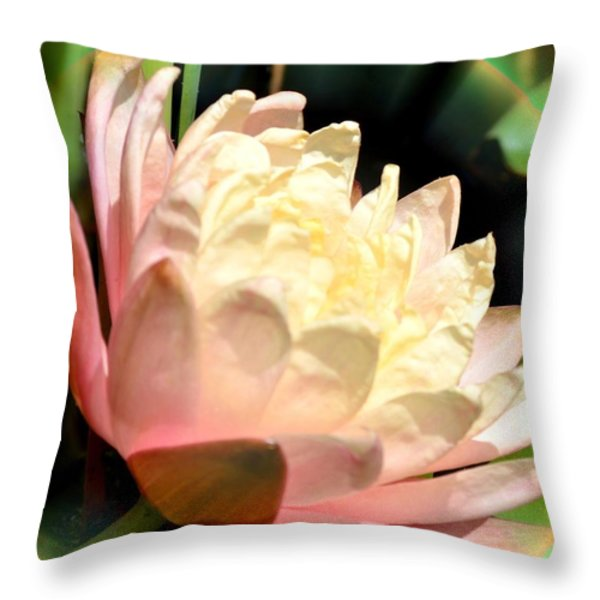 Water Lilly In Bloom Throw Pillow by Maria Urso