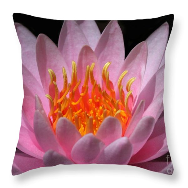 Water Lily On Fire Throw Pillow by Sabrina L Ryan