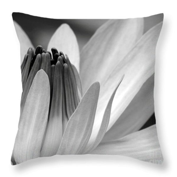Water Lily Opening Throw Pillow by Sabrina L Ryan