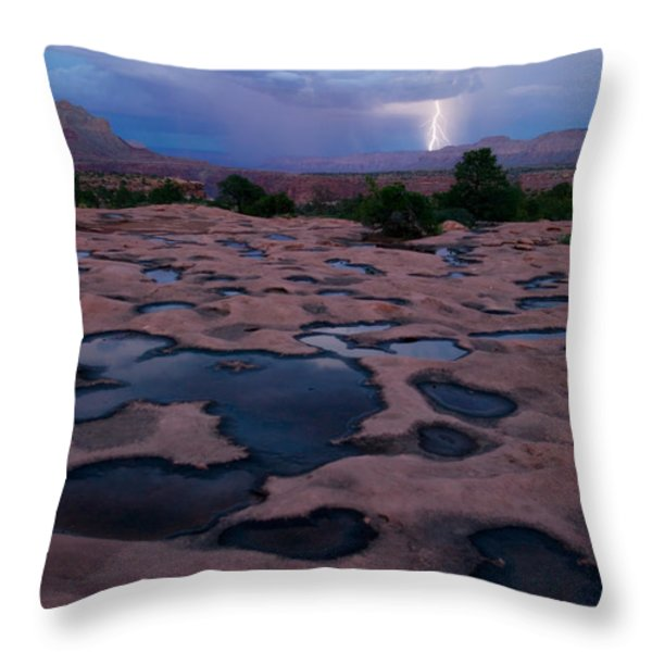 Water Puddled In The Esplanade, A Rock Throw Pillow by Michael Nichols